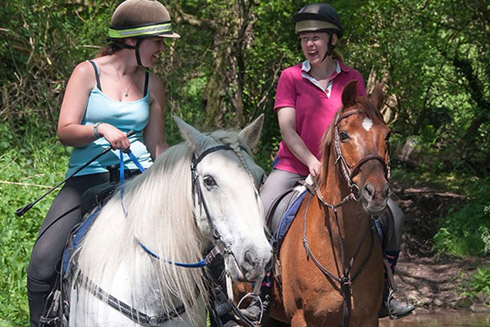 Horse Riding in Dorset